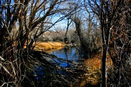 pond-wy-trip.jpg